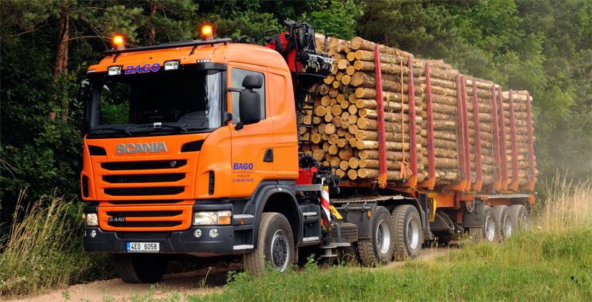 Выкуп лесовозов