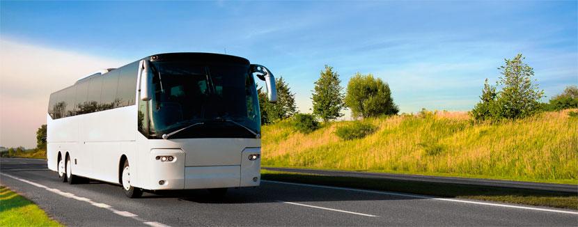 Картинки по запросу Выкуп пассажирских автобусов